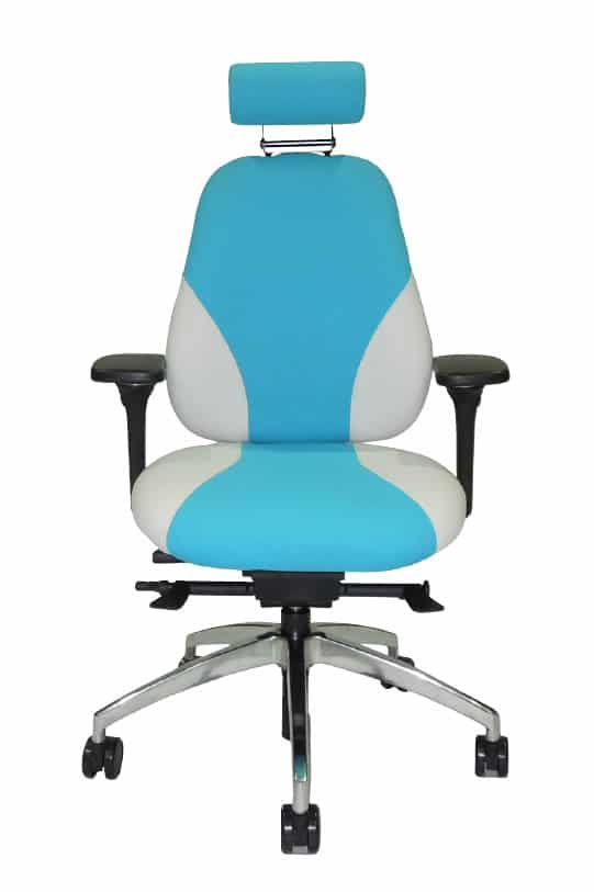 Zentosmart Ergonomic Office Chair